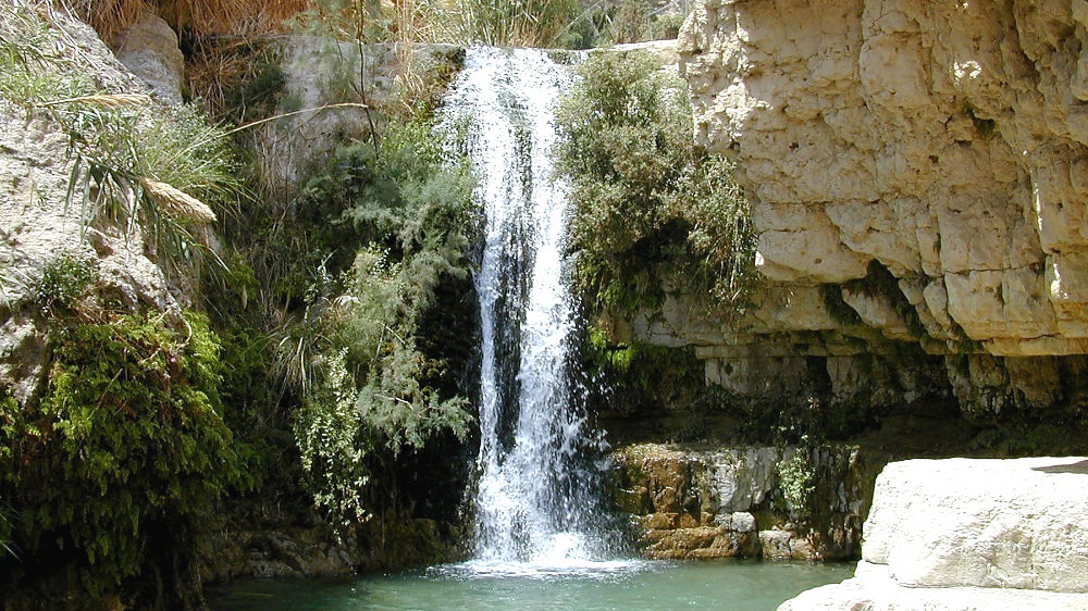 Photo of En Gedi Nahal David Waterfall